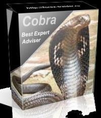 Рекомендации по использованию Форекс-советника Cobra 1:1