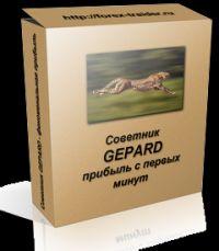 Форекс-советник Gepard 3.1: рекомендации по использованию и настройкам